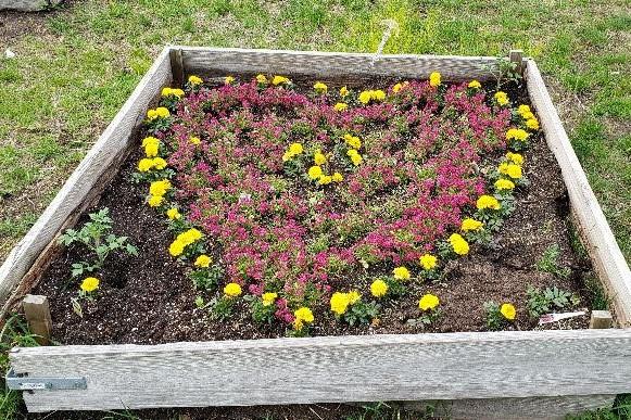 Rebuilding our Garden